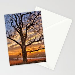 Winter Cottonwood Stationery Cards