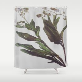 Flowing Lovely Floral Shower Curtain