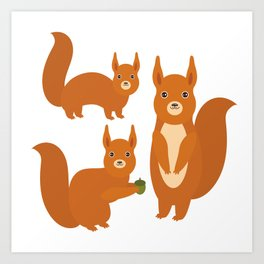 Set of funny red squirrels with fluffy tail with acorn  on white background Art Print