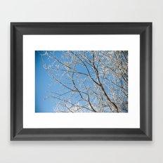 Verglas Framed Art Print