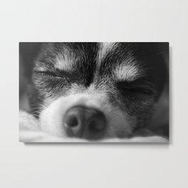 Rufio Sleeping Metal Print