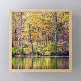brilliant autumn Framed Mini Art Print