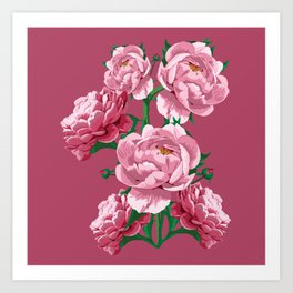 Pretty In Pink Peony Blossoms Art Print