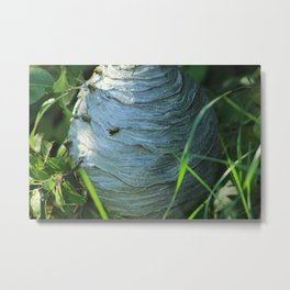 Wasp on a Hive Metal Print