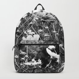 Cosmos flowers  are freely flowering - Black and White Photography Backpack