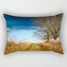 Road to the Storm Rectangular Pillow