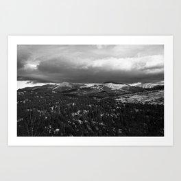 # 320 Art Print