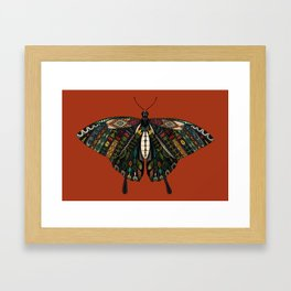 swallowtail butterfly terracotta Framed Art Print