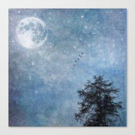 Moon lit flight Canvas Print