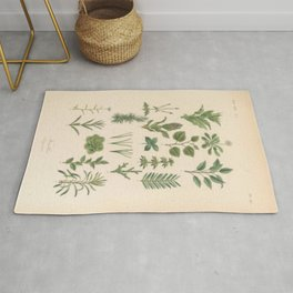 Botany Chart Rug