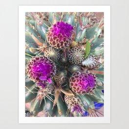 Purple Buds Art Print