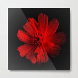 RED - 100418/2 Metal Print