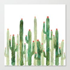 Cactus Four Canvas Print