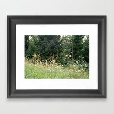Wildflowers 1 Framed Art Print
