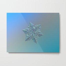 Real snowflake - 13 February 2017 - 5 alt Metal Print