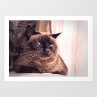 cookie Art Prints featuring Cookie by Rachel's Pet Portraits