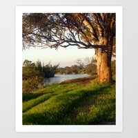 aelwen Art Prints featuring On the banks of the River by Chris' Landscape Images & Designs