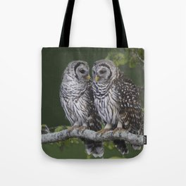 Barred Owls  Tote Bag