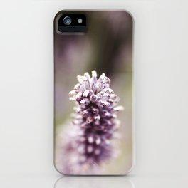 Petit Joie iPhone Case