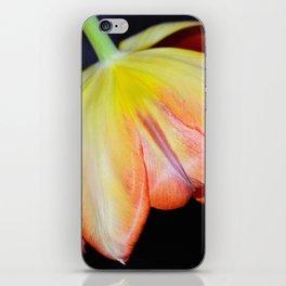 Bold And Beautiful Tulip iPhone Skin