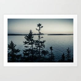 Tree Silhouettes at Bass Harbor Art Print