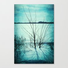 Across the Lines Canvas Print