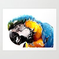 parrot Art Prints featuring Parrot by Regan's World