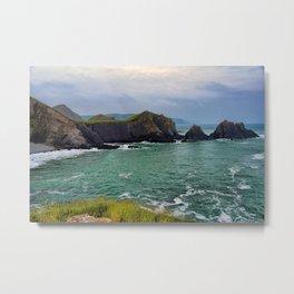 Screda Cove, Hartland Quay, Devon Metal Print