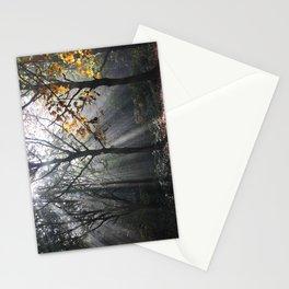Autumn Sunbeams Stationery Cards