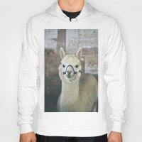 alpaca Hoodies featuring White Alpaca  by Laura Ruth