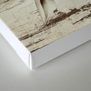 Impact Reclaimed Canvas Print
