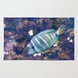 Stunner Fish Rug