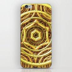 Rich Web iPhone & iPod Skin