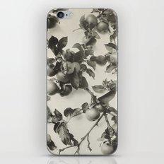Vintage Apple Botanical iPhone & iPod Skin
