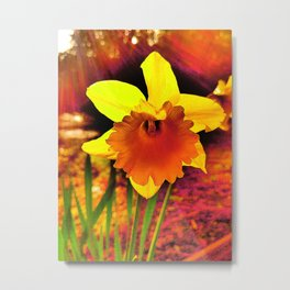 Fired Up For Spring Metal Print