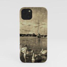 Serene Swans Vintage iPhone Case