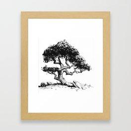 Twisting Tree Framed Art Print