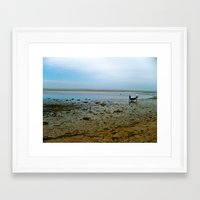 cape cod Framed Art Prints featuring Cape Cod  by Julia Blanchette