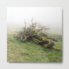 Tree Snag Metal Print
