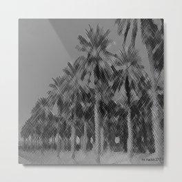 Date Palms in Arizona - Black & White Pencil Drawing Metal Print