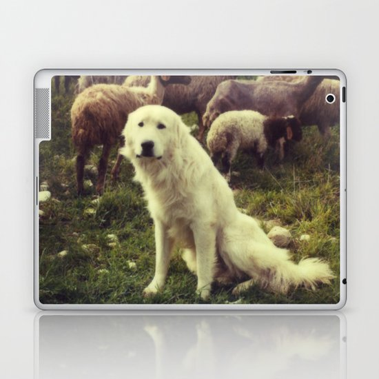 Herding dog, female, south of Israel, scaned sx-70 Polaroid Laptop & iPad Skin