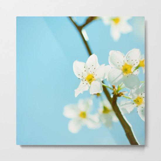 Blue & Blossoms Metal Print