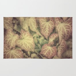 FOR THE LOVE OF IVY Rug
