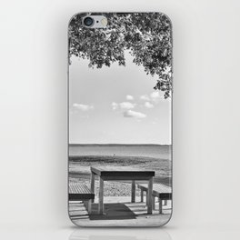 Anyone for a peaceful picnic iPhone Skin