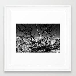 Dark Day Framed Art Print