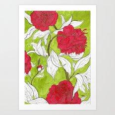 red peonies Art Print