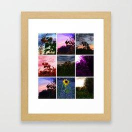 Sunflower Collage Framed Art Print