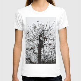 Winter's Apples T-shirt