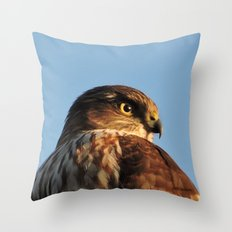 Young Cooper's Hawk Throw Pillow