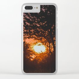 Serengeti National Park, Tanzania VI Clear iPhone Case